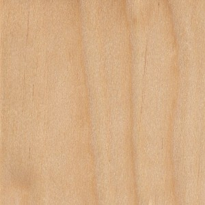 yellow-birch-sealed